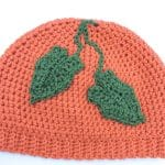 Pumpkin Patch Hat CrochetKim Free Crochet Pattern