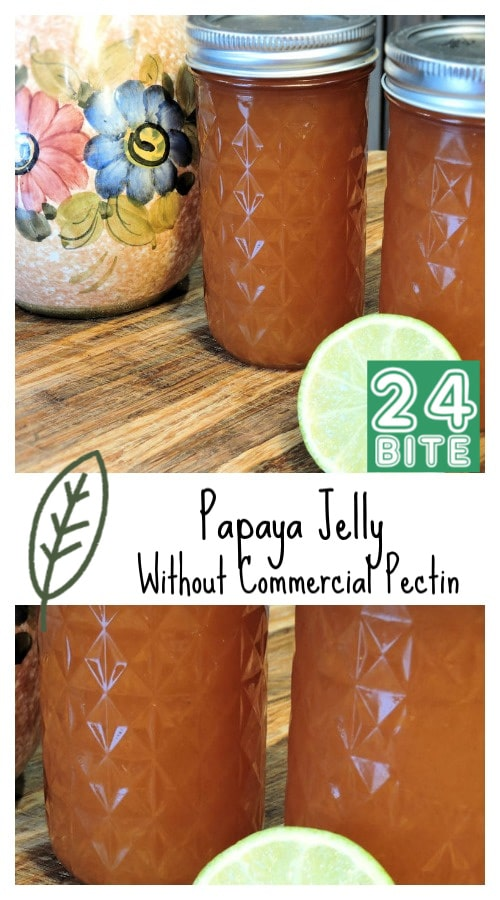24Bite Recipe: Papaya Jelly Without Commercial Pectin